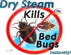 Kill bed bugs instantly bug zapper dry vapor steam cleaner for Dry cleaning kill bed bugs