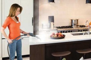 Steam Cleaner For Homes